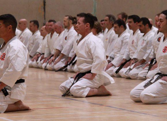Séminaire international sous la direction de Hanshi G. Iwata et Kyoshi A. Tanzadeh